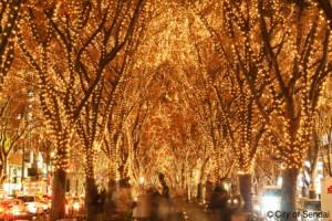 ケヤキ並木が光のトンネルに/写真提供:仙台市観光交流課