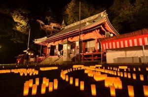 light_up_nikko