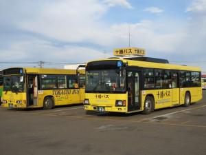 tokachi_bus