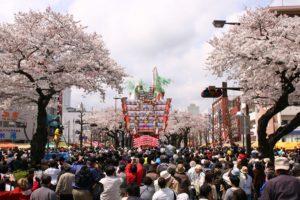 hitachi_sakuramaturi